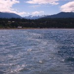 WASHINGTON WATER QUALITY STANDARDS  LACK PROTECTION FOR HUMAN HEALTH Despite Congress's clear requirements, both EPA and the WA Department of Ecology have ignored the law...Read more